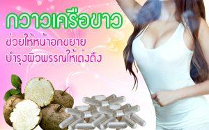 ยาเพิ่มขนาดหน้าอก กวาวเครือขาว ยาเพิ่มฮอร์โมนสตรี
