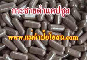 ฮอร์โมนเพศเพิ่ม กิน กระชายดำ