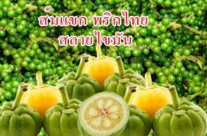 ส้มแขก พริกไทยดำ ลดไขมัน