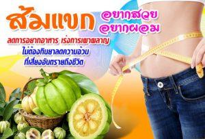 หุ่นกระชับ ลดความอ้วน ส้มแขก