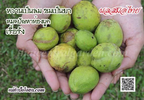 สมอไทย ยาดีท็อกซ์ลำใส้